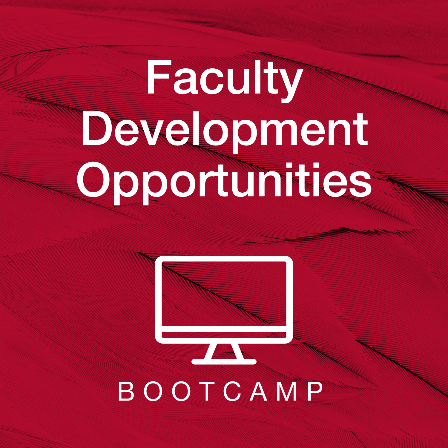 "Image is says ""Faculty Development Opportunities: Bootcamp"""